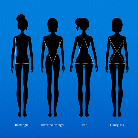 Female body types. Vector illustration.