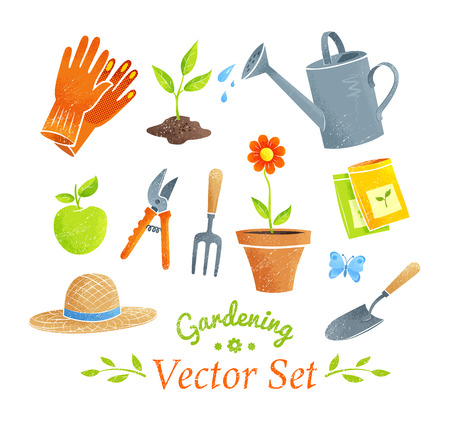 Collection of gardening equipment and plants.