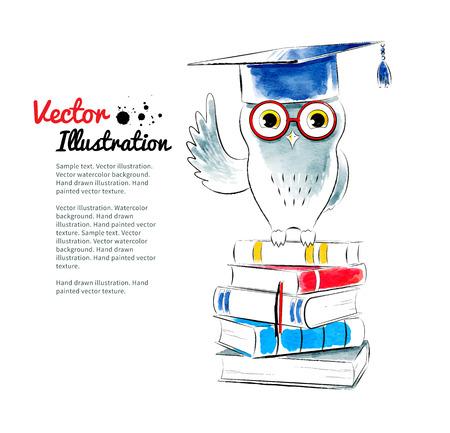 birrete: Búho sentado en los libros. Ilustración vectorial de la acuarela.