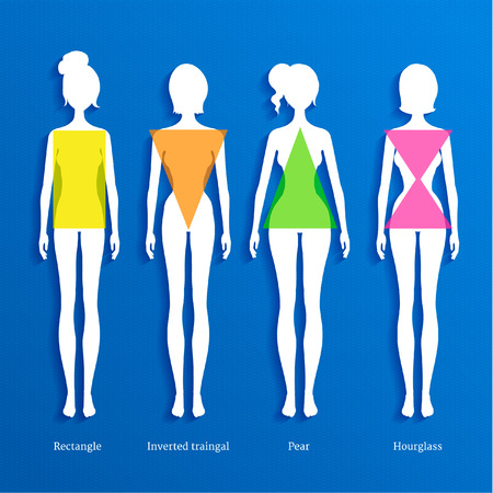 types: Vector illustration of female body types.