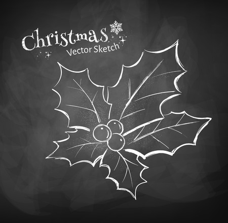 christmas backdrop: Chalkboard drawing of Christmas holly.