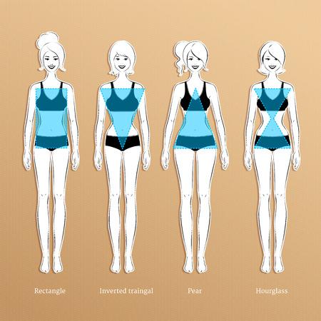 feminino: Ilustração do vetor de tipos de corpo feminino.