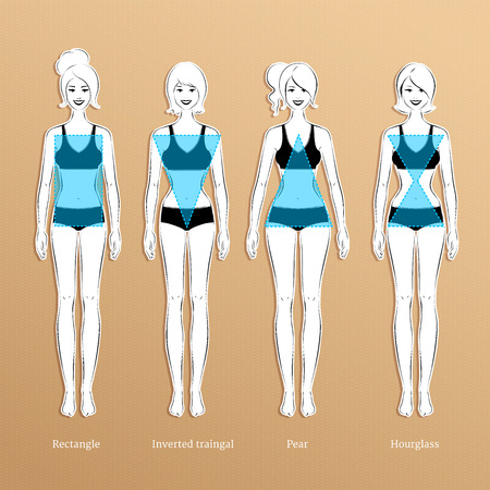 females: Vector illustration of female body types.