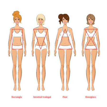 Ilustración vectorial de los tipos de cuerpo femenino. Vectores