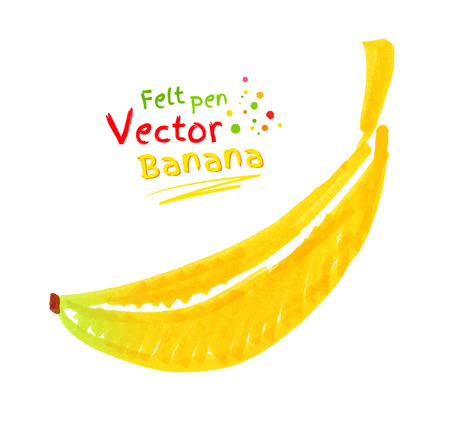 crayon: Vector felt pen childlike drawing of banana.