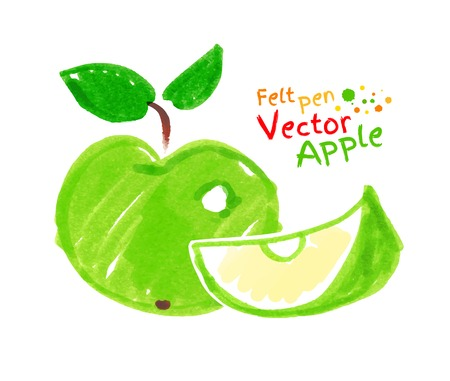 apple slice: Vector felt pen childlike drawing of apple.