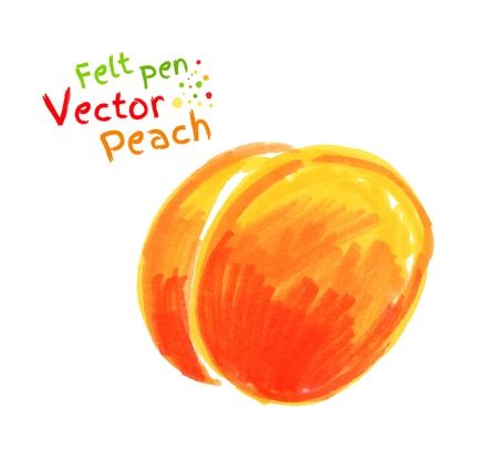 childlike: Vector felt pen childlike drawing of peach.