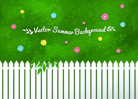 cerca blanca: Ilustraci�n vectorial de arbustos en flor y jard�n cerca blanca.