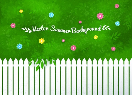 shrubs: Vector illustration of blooming shrubs and garden white fence.