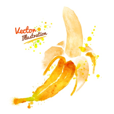 Hand drawn watercolor vector illustration of banana with paint splashes. Ilustração