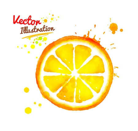 Watercolor vector hand drawn slice of orange with paint splashes. Ilustração