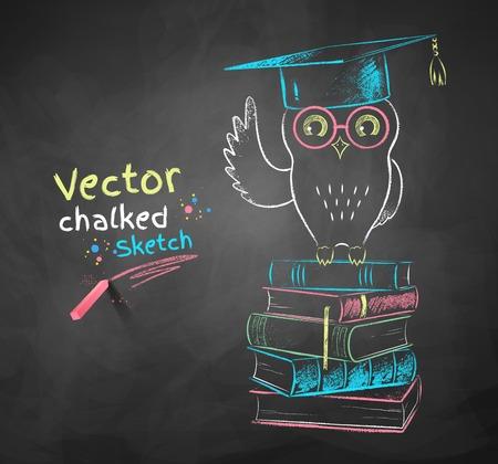 educação: Cor do vetor desenho de giz de coruja senta-se em livros.