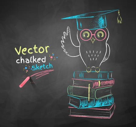 black grunge background: Vector color chalk drawing of owl sitting on books.