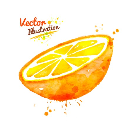 slice: Hand drawn watercolor vector illustration of half of an orange with paint splashes.