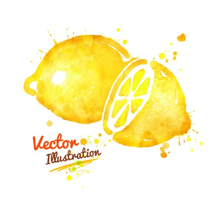 Watercolor vector illustration of lemon with paint splashes.