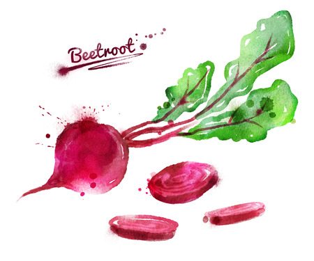 Watercolor hand drawn illustration of beetroot with paint splashes.
