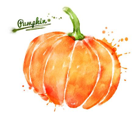 citrouille halloween: Aquarelle dessin� � la main illustration de citrouille avec des �claboussures de peinture.