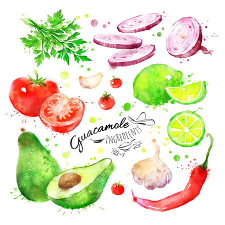 Collection of hand drawn watercolor vegetables - guacamole ingredients.