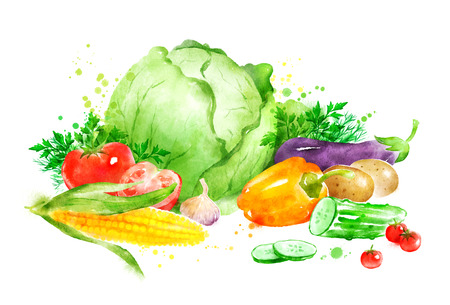 watercolor smear: Hand drawn watercolor illustration of still life with vegetables. Stock Photo