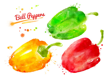 Watercolor hand drawn set of bell peppers with paint splashes.