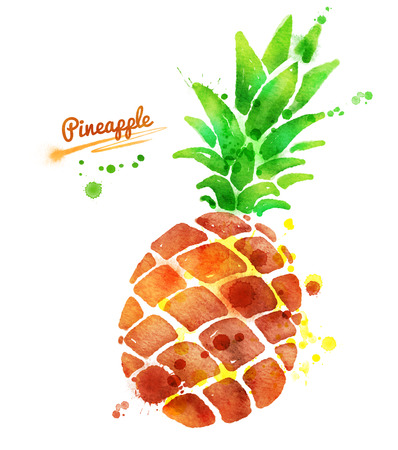 Hand drawn watercolor illustration of pineapple with paint splashes.