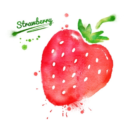 strawberry: Watercolor hand drawn strawberry with paint splashes.