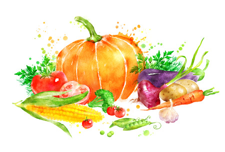Hand drawn watercolor illustration of still slife with vegetables with pumpkin and corn.