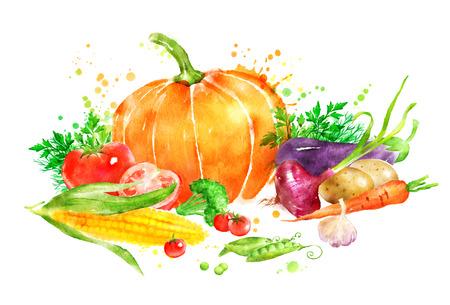Hand getekende aquarel illustratie van nog slife met groenten met pompoen en maïs.