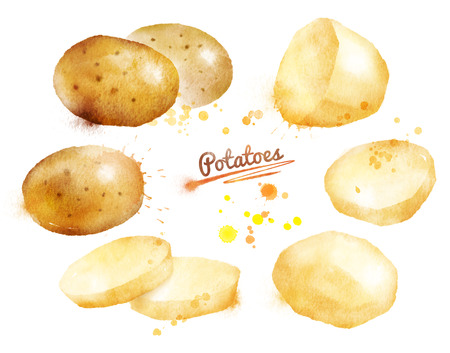Watercolor hand drawn illustration of potatoes with paint splashes. Whole, half and slices. Archivio Fotografico