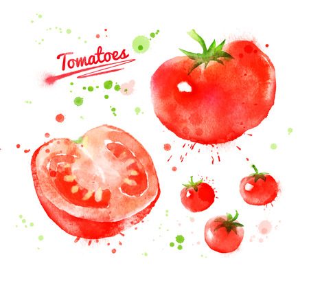 Watercolor hand drawn illustration of tomatoes with paint splashes. Whole, half and cherry.