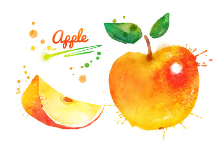 yellow apple: Hand drawn watercolor illustration of yellow apple with paint splashes.