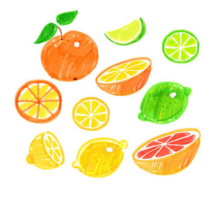 childlike: Felt pen childlike drawing of citrus fruit. Stock Photo