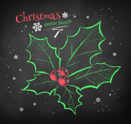 Color chalk vector sketch of Christmas holly on black chalkboard background.