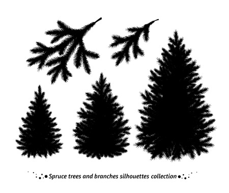 Spruce trees and branches silhouette vector collection.