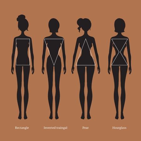 bodies: illustration of female body types silhouettes. Illustration