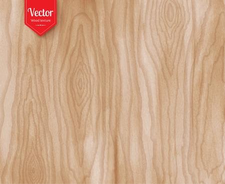 madera: madera de textura de fondo grunge luz.