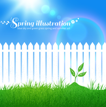 white fence: Spring background with growing sprout,  garden white fence and blue sky with sunbeams. Illustration