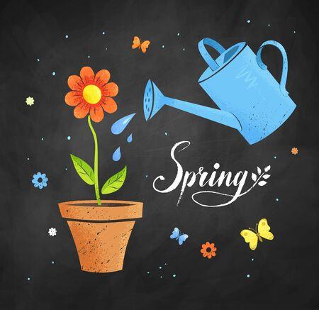 illustrazione di giardinaggio con annaffiatoio e fiori in vaso sulla lavagna sfondo nero.