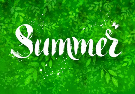 tree texture: Summer word brush lettering on background with foliage, bushes and tree brunches watercolor texture.