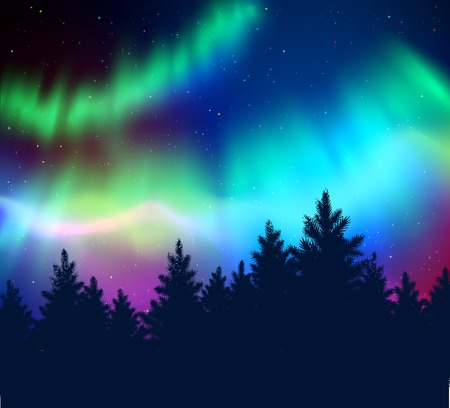 Paesaggio invernale sfondo con le luci del nord e nero abete rosso silhouette foresta.