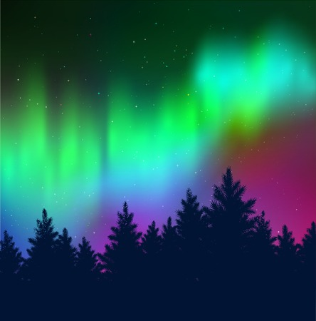 Winter landscape background with northern lights and black spruce forest silhouette.