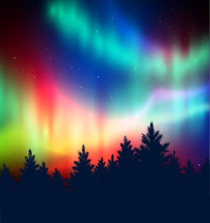 aurora: Winter landscape background with northern lights and black spruce forest silhouette.