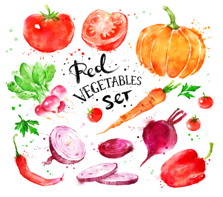 Hand drawn artistic watercolor set of red vegetables with paint splashes. Stock Photo