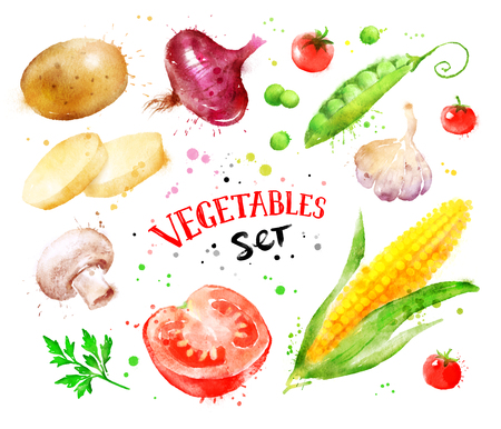 Hand drawn watercolor colorful set of vegetables with paint splashes.