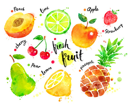 Hand drawn watercolor colorful set of fruit with paint splashes.