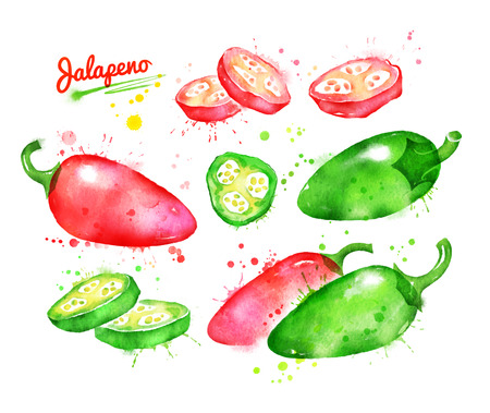 Watercolor collection of jalapeno pepper