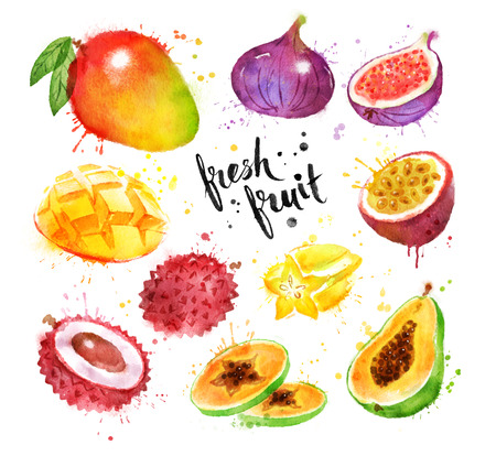 Watercolor set of tropical fruit