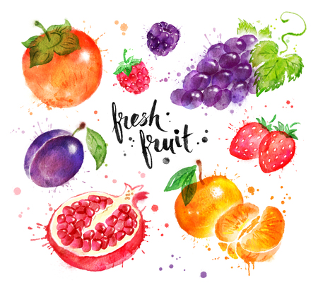 Hand painted watercolor of fruit