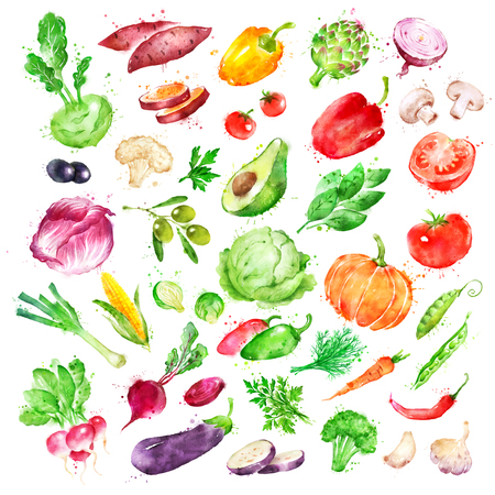Watercolor illustration set of vegetables Stock Photo