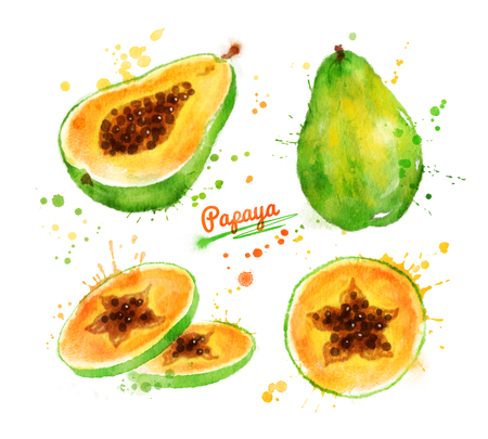 Watercolor illustration of papaya, whole, half and sliced with paint smudges and splashes.